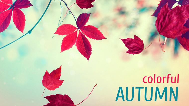 دمو اسلایدر Autumn Experiment لایراسلایدر
